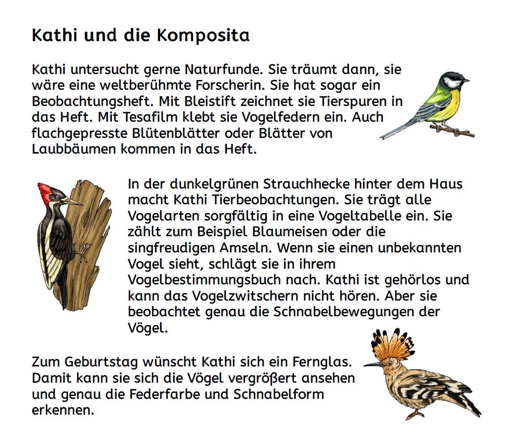 kathi_und_die_komposita_lesetext