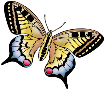 easter_swallowtail
